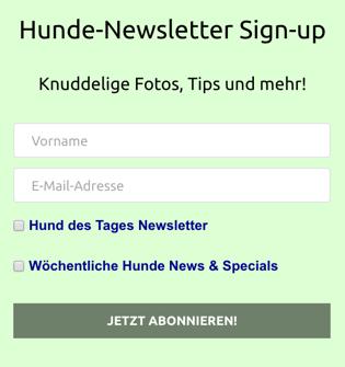 Abonnement-Widget